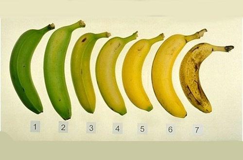 Gula eller gröna bananer - vilket är nyttigare?