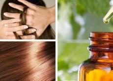 reparera håret