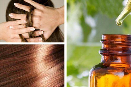 Hur du tillreder ett naturligt serum för att reparera håret