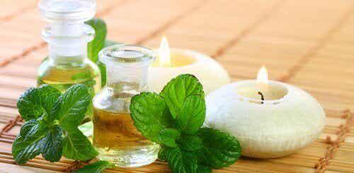 Hur du bereder myntaolja för din hälsa