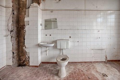 Sätt dig helst inte ner på offentliga toaletter
