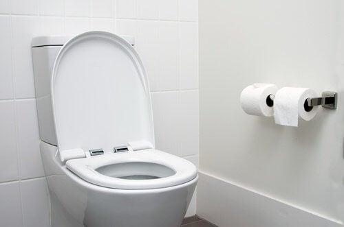 Rengör toalettsitsen om du sätter dig