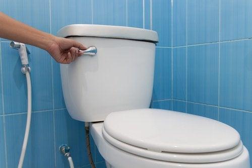 offentliga toaletter