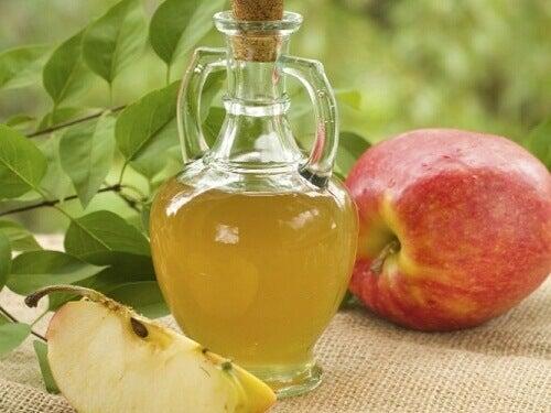 Kan man gå ner i vikt med äppelcidervinäger?