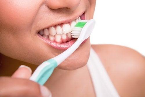 Borstar tänderna