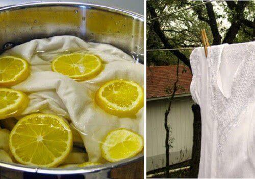 Citroner-och-tvätt