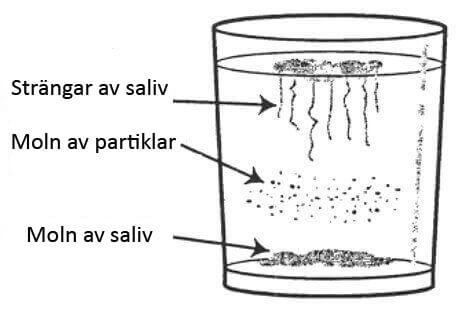 Saliv i vatten