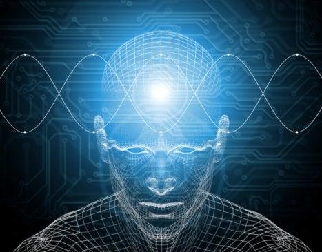 Hjärnfunktion