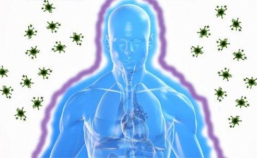Immunförsvarets skyddar oss sjukdomar