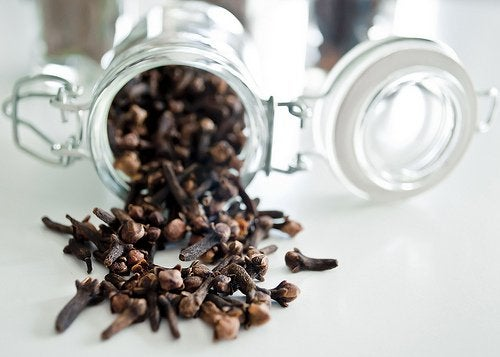 Använd kryddnejlika för att förbättra matsmältningen