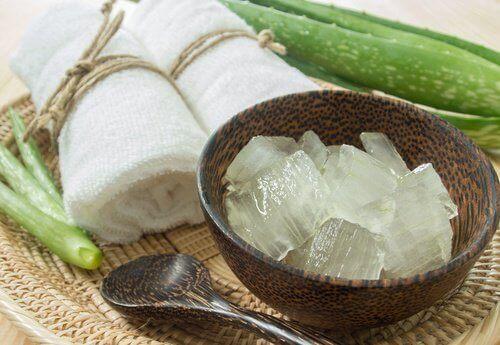 Aloe vera innehåller massor med näring för huden