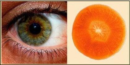 11 nyttiga livsmedel som liknar kroppsdelar