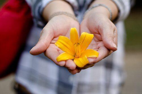 Blomma i händer