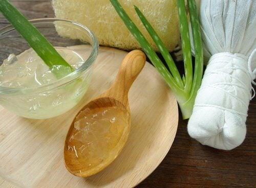 Aloe vera mjukar upp huden