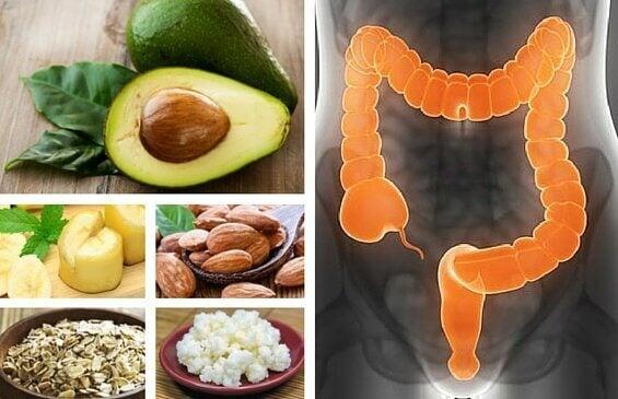 6 livsmedel för att effektivt behandla IBS