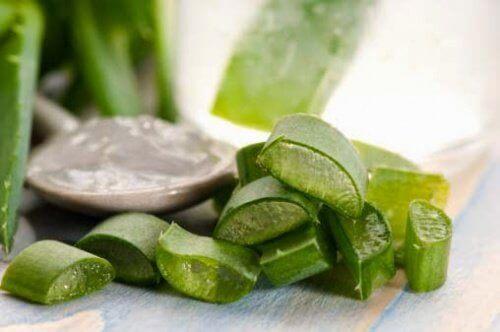 Aloe kan lindra klåda, inflammation och sveda