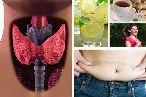 Hur du behåller din vikt när du har hypotyreos