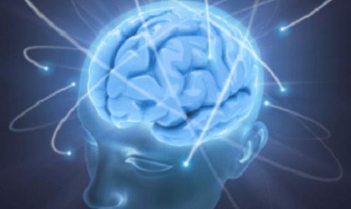Hjärnan behöver vatten