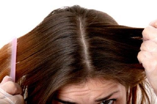 kamma håret