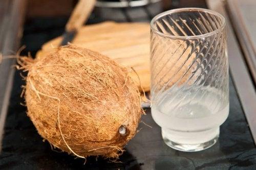 Vad som händer i kroppen när du dricker kokosvatten