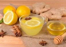 1-Citron-och-ingefära