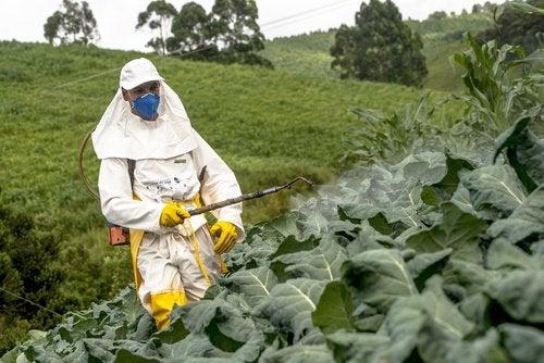 2-pesticides