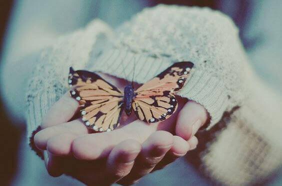 Fjäril-i-hand