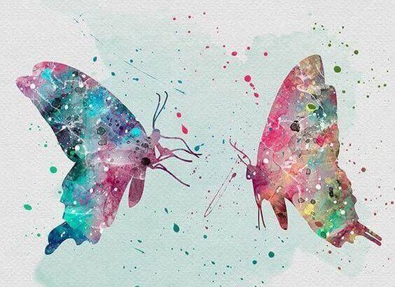 Färgglada fjärilar