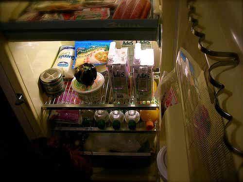 Huskurer som bekämpar dålig lukt i kylskåpet