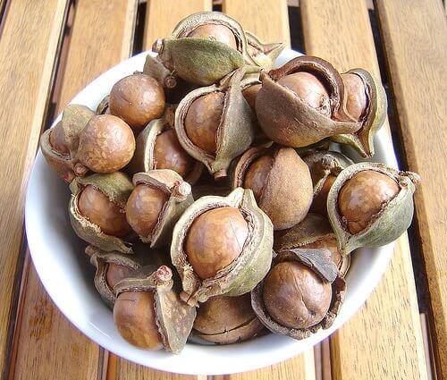 nötter