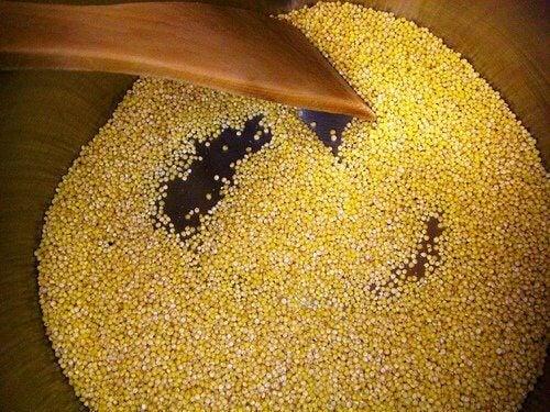 Fördelarna med hirs: ett alkaliserande livsmedel
