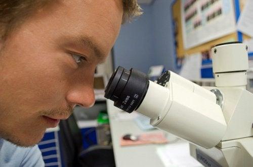 Undersökning med mikroskop