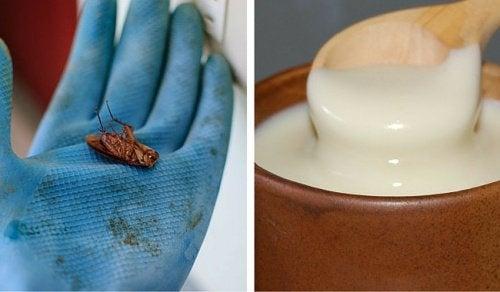 doda-kackerlackor-enkelt