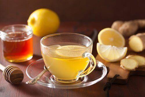 Citron- och ingefärste