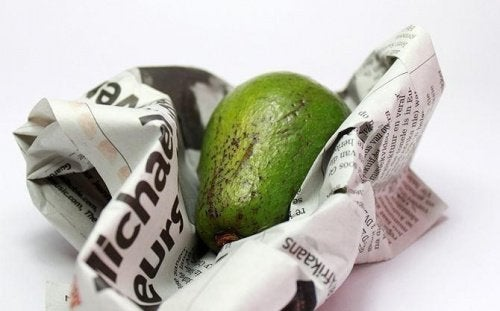 Avokado och tidningspapper
