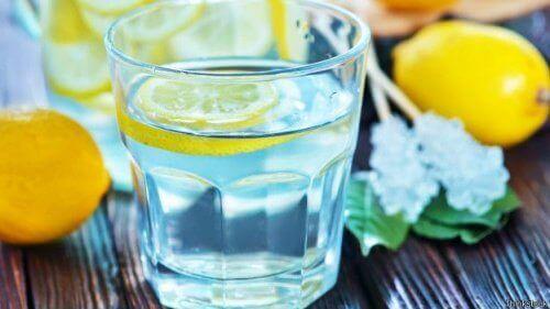 färsk lemonad