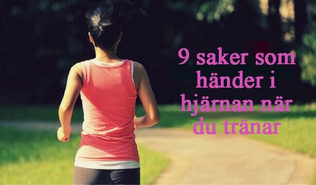 9 saker som händer i hjärnan när du tränar