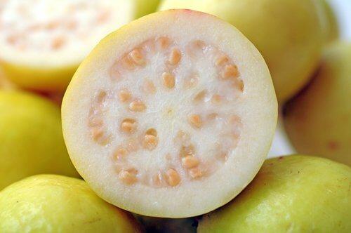 Uppskuren guava