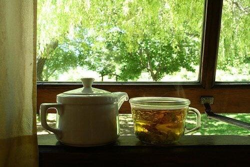 te på citronmeliss