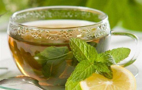 Te med citronmeliss