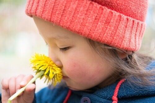 Färska stjälkar kan orsaka irritation hos barn