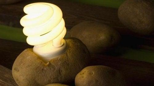 Hur man gör en fungerande potatislampa