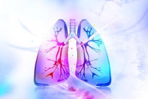 7 livsmedel för att rensa nikotin från kroppen