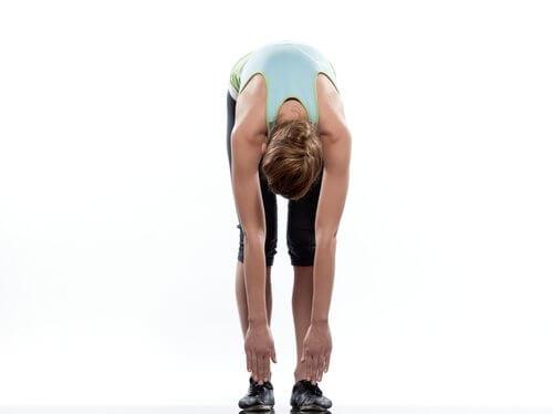 stretcha-ryggen