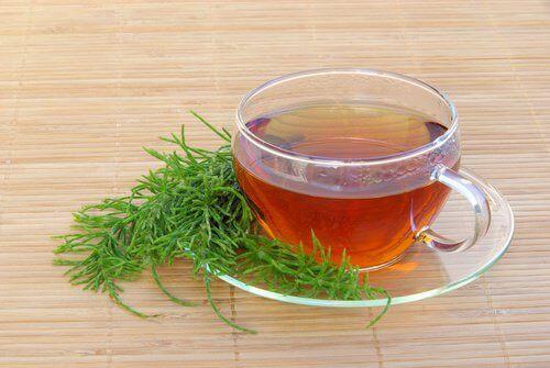 te på åkerfräken