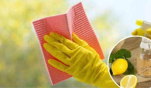Hemmaknep för att rengöra glasytor och fönster