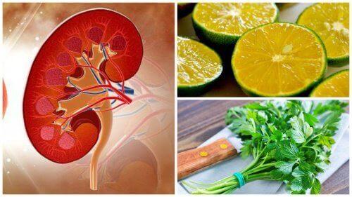 eliminera-njursten-naturligt
