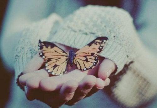 fjäril i hand