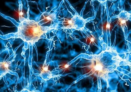 Forskare hittar ny behandling för Alzheimers