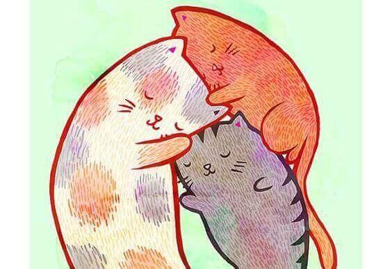 kramande katter